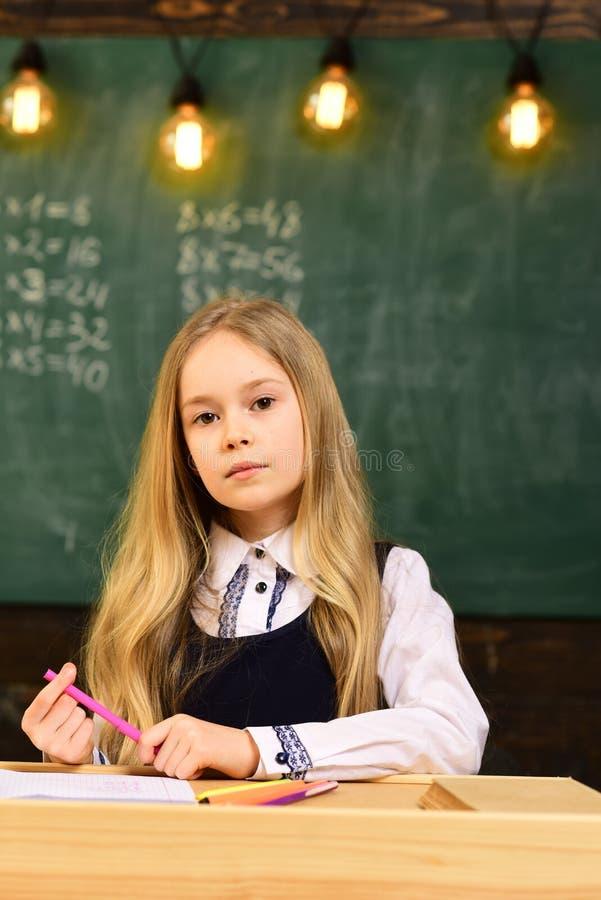 老师的,膝上型计算机采取辅导的学生追猎与美丽的白肤金发的家庭教师