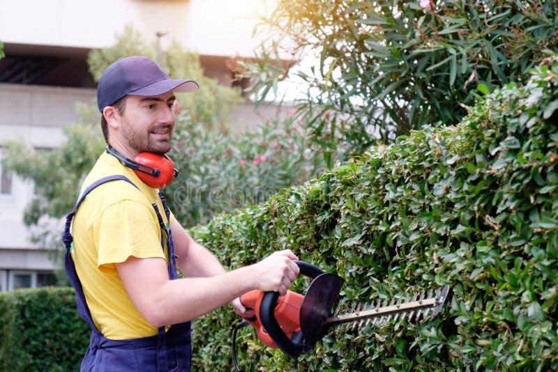 使用树篱飞剪机的花匠 免版税图库摄影