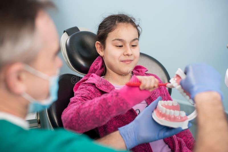 使用牙齿下颌模型和牙刷,牙医椅子的女孩教育关于适当牙掠过由她的牙医, 库存照片