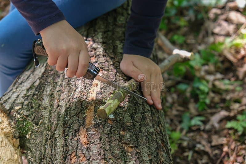 使用瑞士刀子的女孩或男孩的手,锯一块木头在森林,没人 免版税库存照片