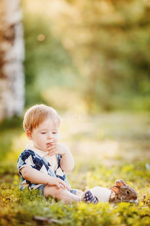 使用用兔子的小男孩 免版税库存图片