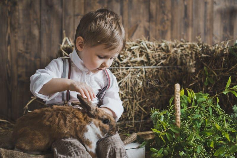 使用用兔子6048的一个小男孩的画象 库存照片