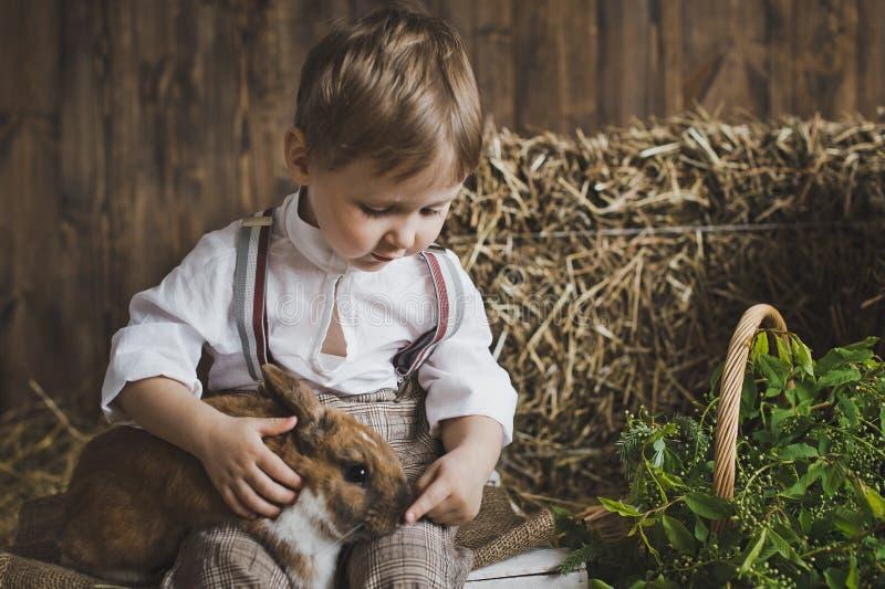 使用用兔子6049的一个小男孩的画象 库存图片