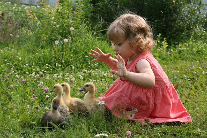使用用鸭子的小女孩 免版税库存图片