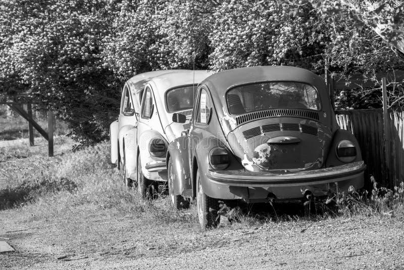 使用的葡萄酒汽车在黄昏阳光下 免版税库存图片