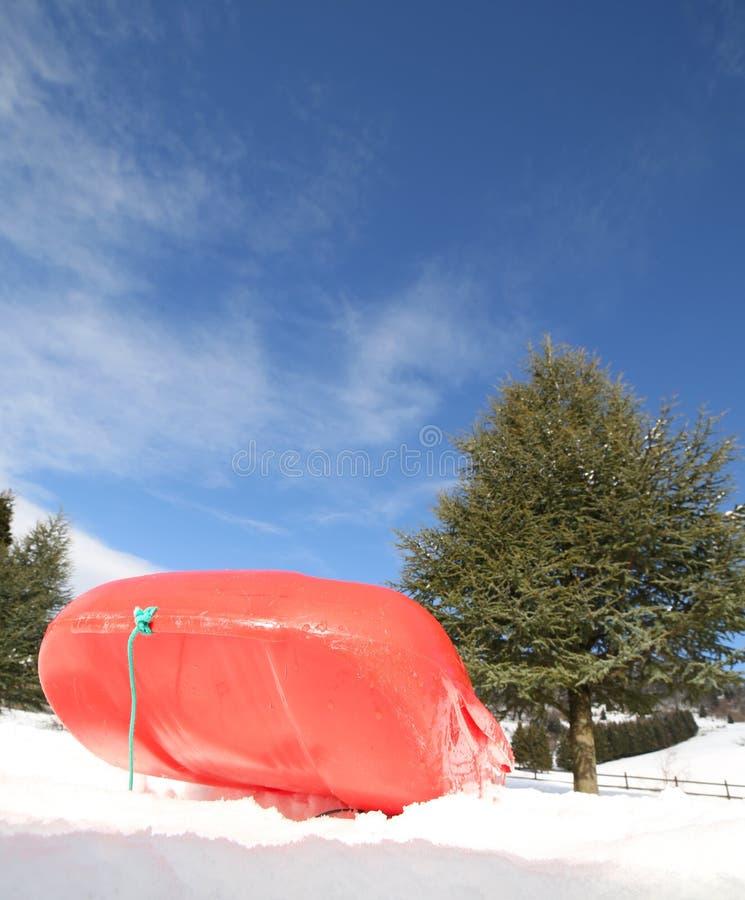 使用的Reb突然移动在雪在冬天 图库摄影