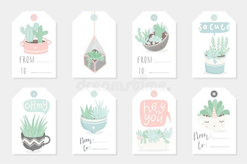 使用礼物夏天标记、卡片和贴纸的汇集的redy与多汁植物 皇族释放例证