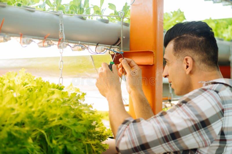 使用螺丝刀的深色头发的农业学家批准轻的系统 库存图片