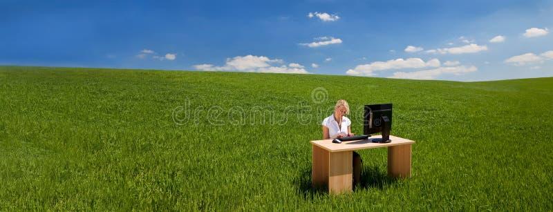 使用计算机的全景女实业家在书桌在绿色领域横幅 免版税图库摄影
