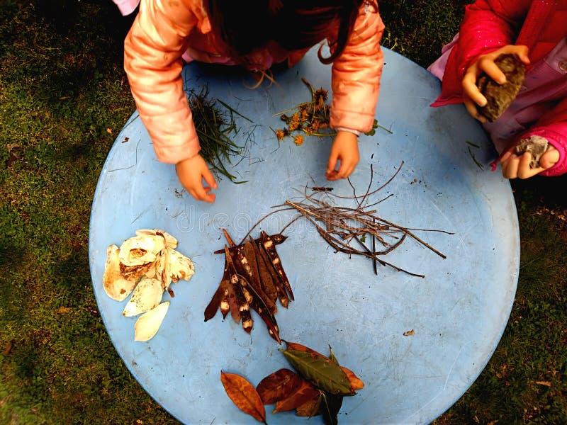 使用,expolring和从事园艺在有土壤的,叶子,坚果,棍子,植物,在学校期间的种子庭院里的小孩 免版税图库摄影