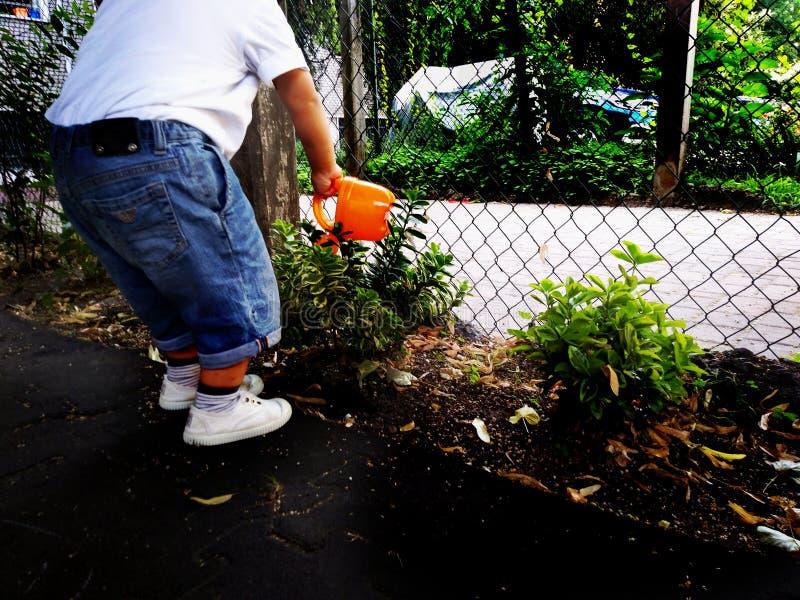 使用,expolring和从事园艺在有土壤的,叶子,坚果,棍子,植物,在学校期间的种子庭院里的小孩 库存照片