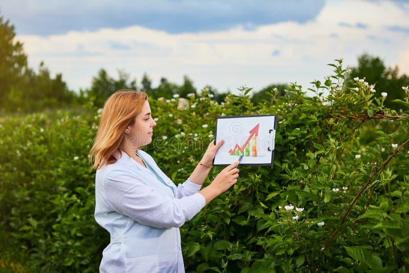 使用infographics,工作在果子庭院里的妇女科学家和显示农作物成长的水平 生物学家审查员审查blackb 免版税图库摄影