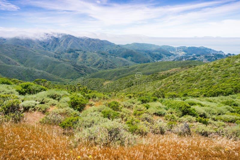 使盖Montara山McNee大农场国家公园,加利福尼亚嫩绿的小山和谷模糊  免版税库存图片