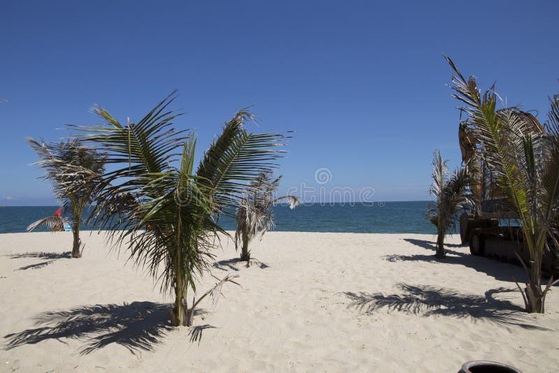 使目炫晴朗的蓝色沙子和白海和椰子 免版税库存图片
