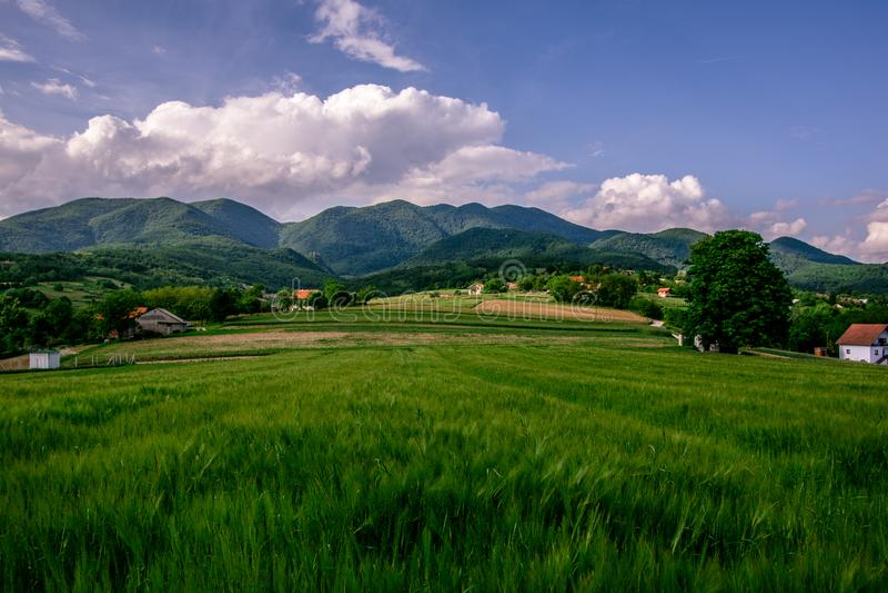 download 使绿色农业领域的看法环境美化与蓝天和w的 库存图片.图片