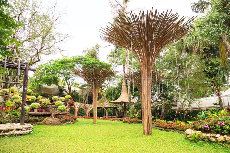使绿草和花,超级树树丛环境美化的装饰物装饰庭院,土井桐树,清莱,泰国 图库摄影