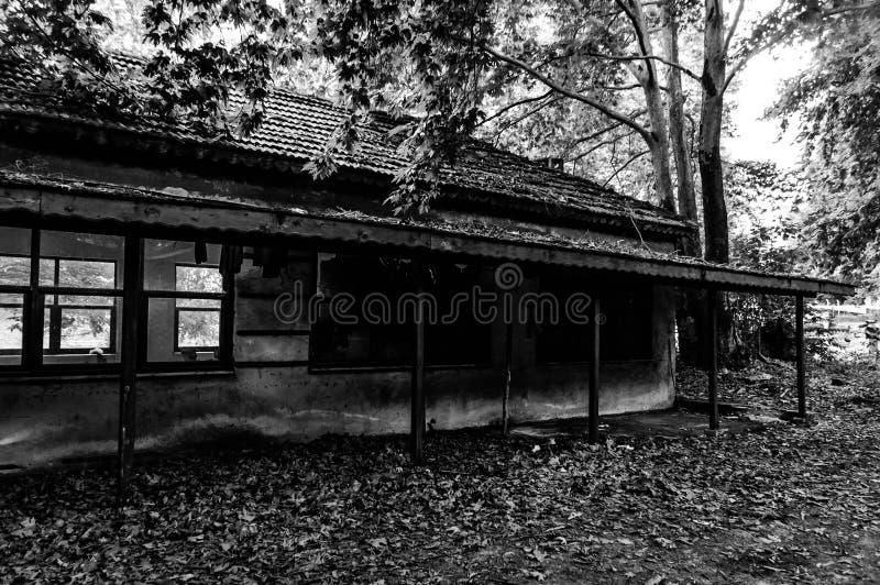 使荒凉的大厦废墟在土耳其乡下森林地  免版税库存照片