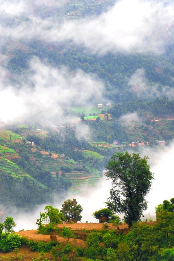 使西藏人环境美化 库存照片