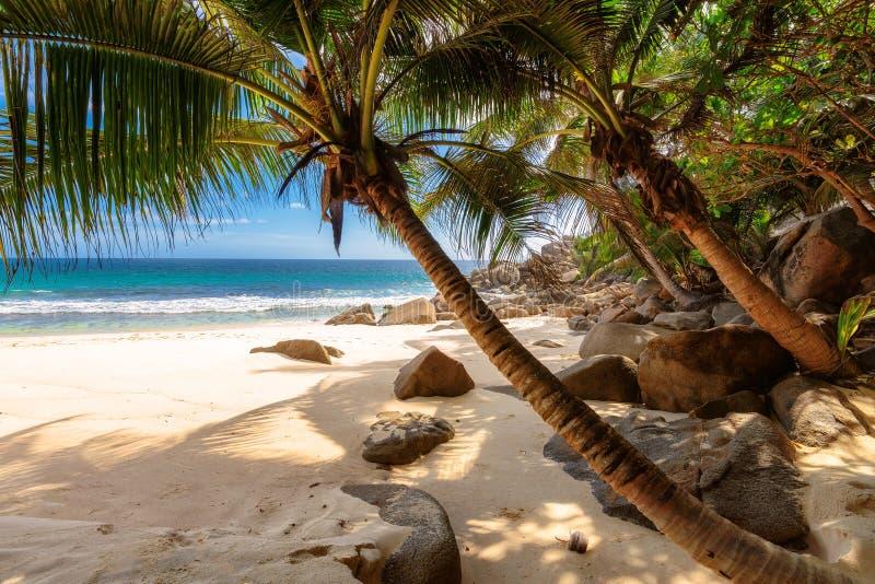 使Anse Mahe海岛,塞舌尔群岛Takamaka靠岸  免版税库存图片