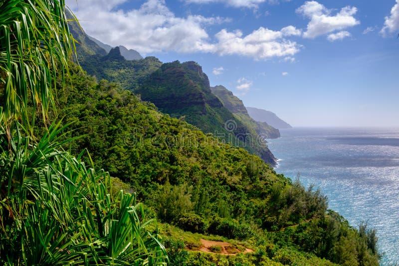 使Na梵语海岸线和森林环境美化看法Kalalau足迹的, 库存照片