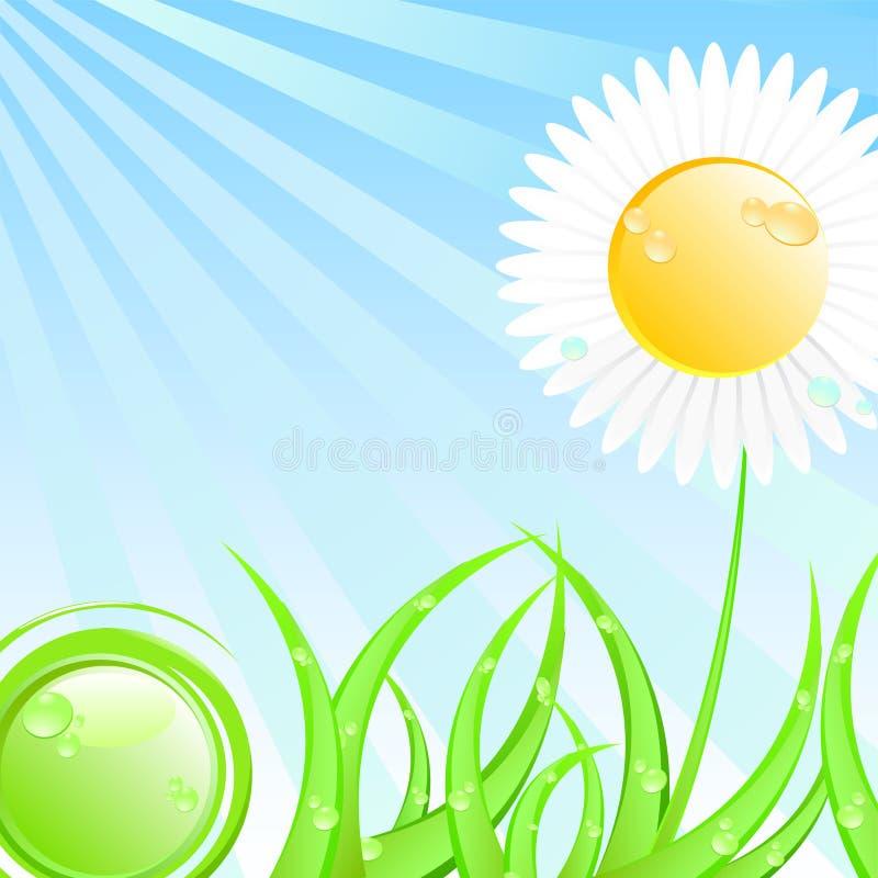 例证晴朗春天的夏天 皇族释放例证