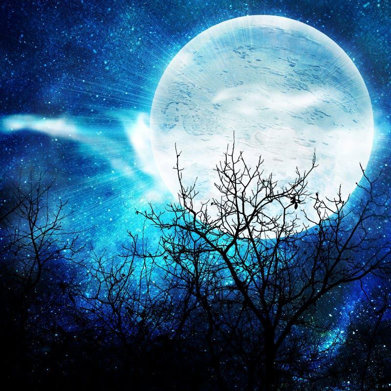 例证月亮晚上 库存例证