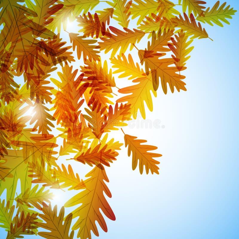 例证秋天主题 橡木叶子 r 库存例证