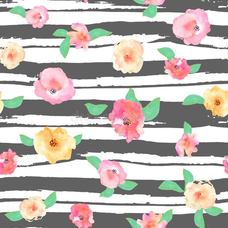 例证花卉无缝 与黑小条的美丽的玫瑰 向量例证