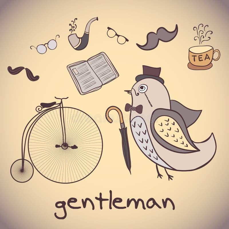 例证,鸟绅士 归因于花花公子 向量例证