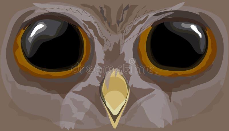 例证howlet 猫头鹰的头 向量例证