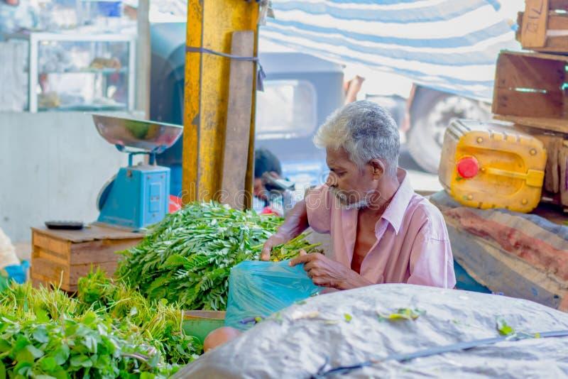 供以人员市场,斯里兰卡的Pettah的街道照片 库存照片