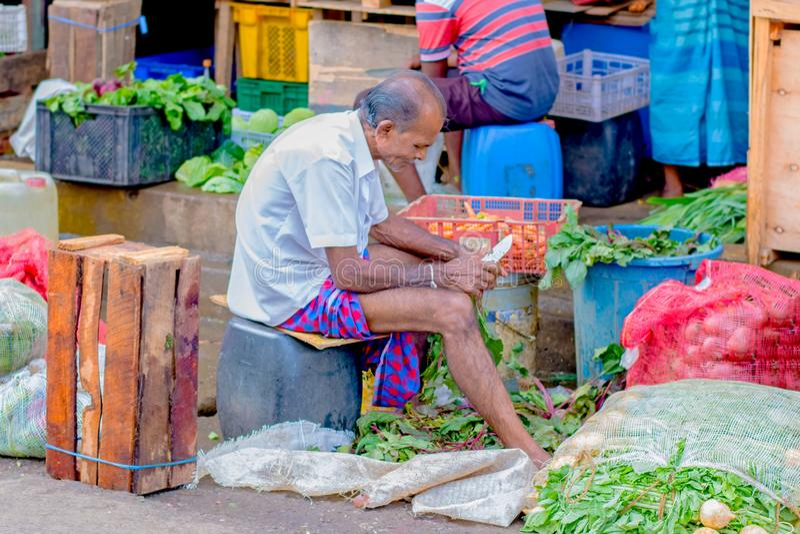 供以人员市场,斯里兰卡的Pettah的街道照片 图库摄影