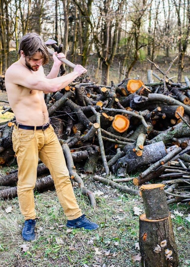 供以人员收集木森林轴住在森林并熟悉森林的人设备的残酷可爱的人 人成串珠状的残酷性感的伐木工人运载轴 库存图片