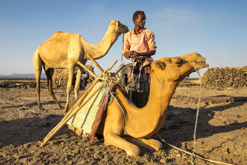 供以人员装载他的骆驼在夜` s艰苦跋涉的Erta强麦酒营地由火山决定 图库摄影
