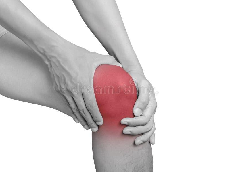 供以人员遭受膝盖痛苦,关节痛 单音口气聚焦 库存图片