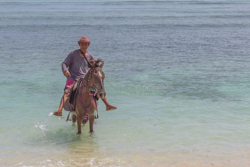 供以人员骑他的在浅水区的马在islan的印度尼西亚人 库存照片