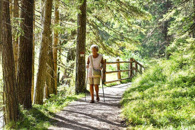 供徒步旅行的小道的老妇人 图库摄影