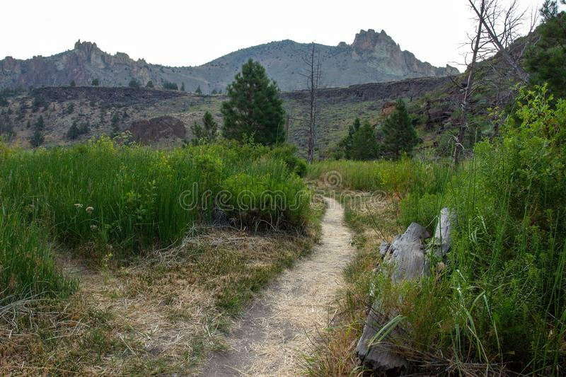 供徒步旅行的小道通过草的领域在匠有峭壁的岩石国立公园在日出期间的背景中 免版税库存图片