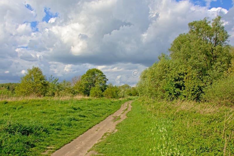 供徒步旅行的小道通过豪华的绿色佛兰芒春天环境美化 免版税库存图片