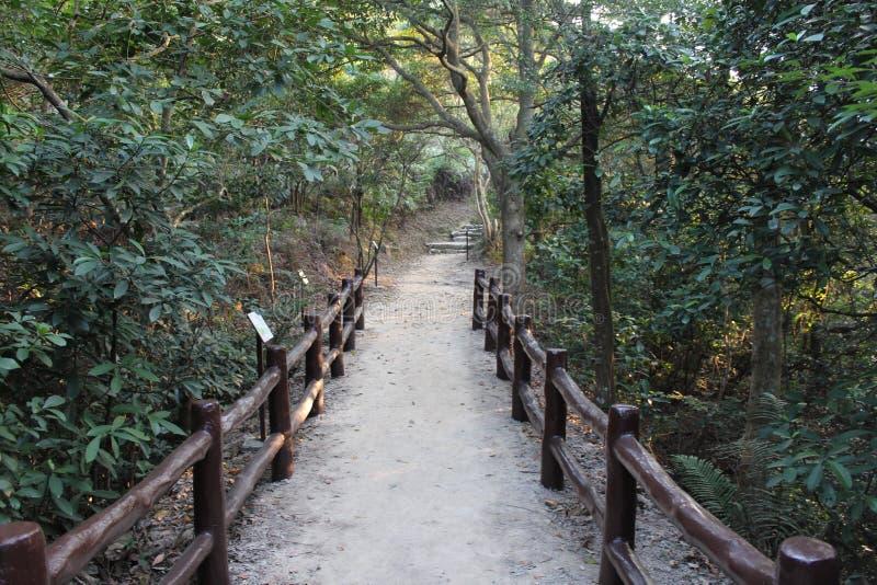 供徒步旅行的小道-香港 库存照片