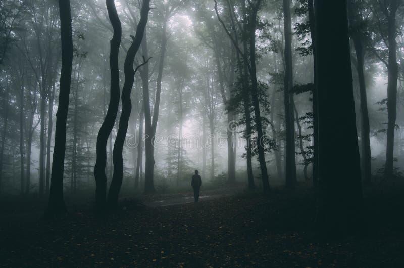 供以人员剪影在万圣夜夜在有雾的黑暗的神奇森林里 库存照片