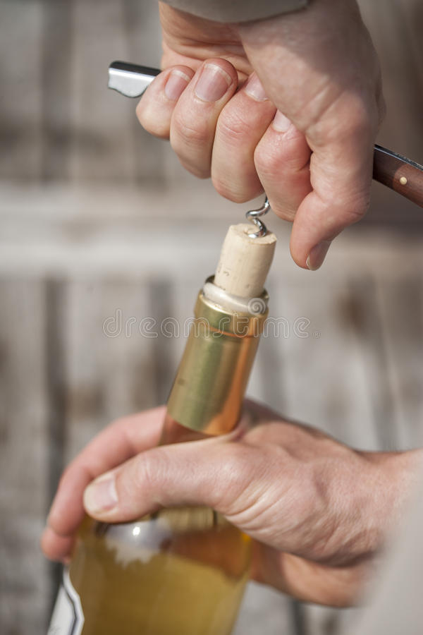 供以人员吐露一个瓶与拔塞螺旋的白葡萄酒 免版税库存照片