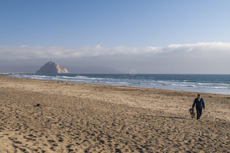 供以人员和他的走在与Morro岩石的空的海滩的狗在Backgr 库存照片