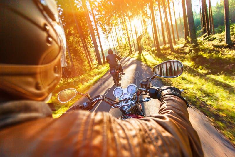 供以人员在摩托车的位子在森林公路 图库摄影