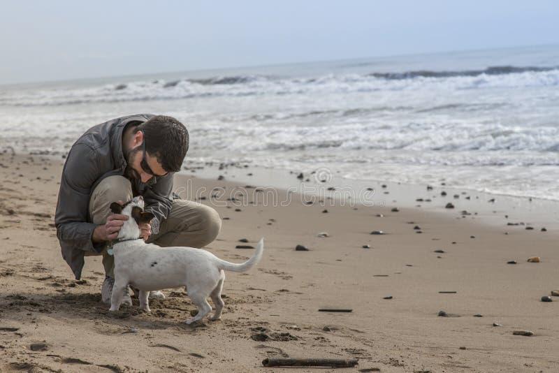 供以人员爱抚他的狗,当使用在海滩时 库存照片