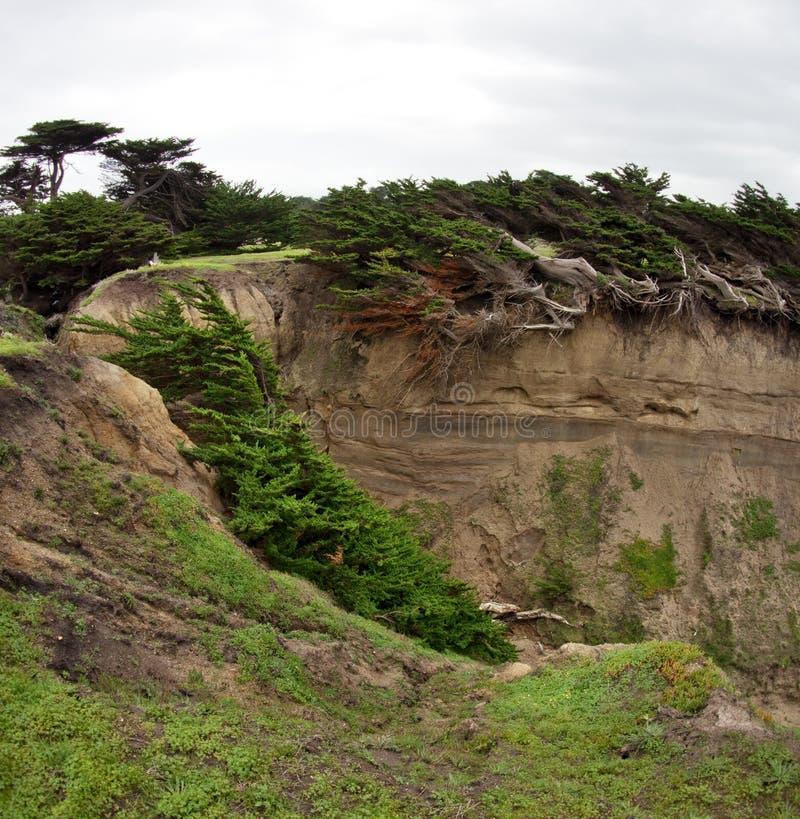 侵蚀是失去的土地发生的快速的大大块,冲走由雨和风 库存图片