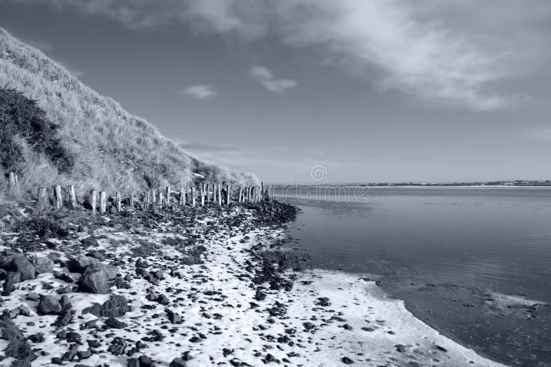 侵蚀irelands保护冬天 免版税图库摄影