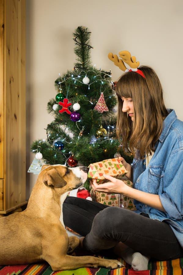 便服佩带的驯鹿服装党帽子的年轻女性有她的爱犬的在客厅坐 库存照片