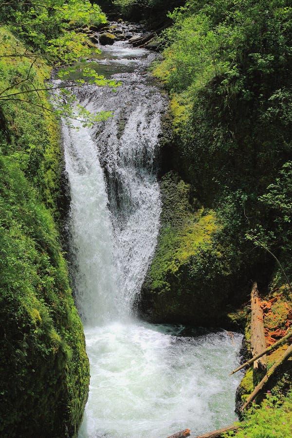 俄勒冈州哥伦比亚河谷中奥诺塔瀑布 免版税库存图片