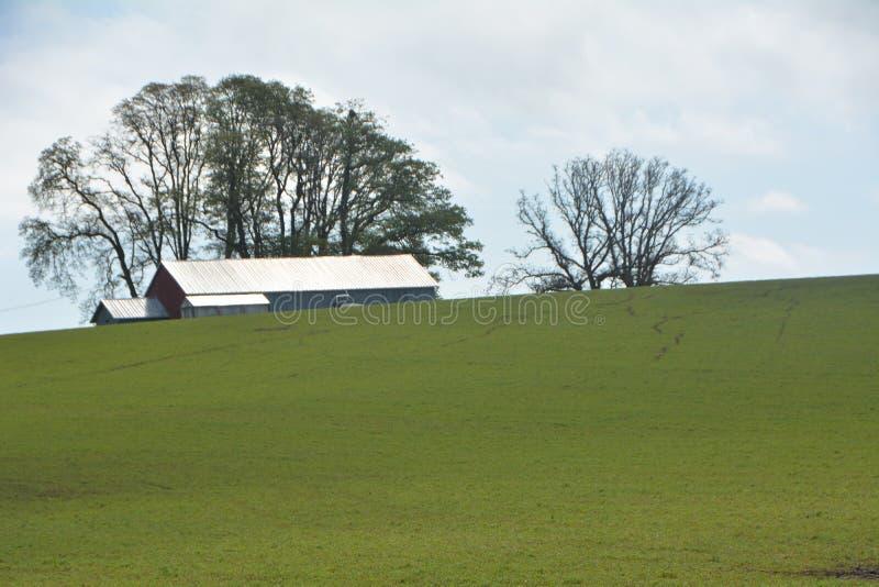 俄勒冈州威拉梅特谷的一座农场 库存照片